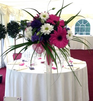 Cerise Gerbera Tall Table Arrangement