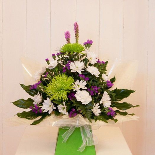 Zingy Lime Purple and White